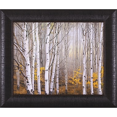 Art Effects Aspen in Fog by Charles Cramer Framed Photographic Print