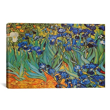 iCanvas 'Irises' by Vincent Van Gogh Painting Print on Canvas; 40'' H x 60'' W x 1.5'' D