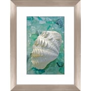 PTM Images Sea Glass and Shell Framed Photographic Print