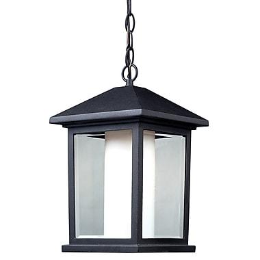 Z-Lite Mesa 1-Light Outdoor Hanging Lantern