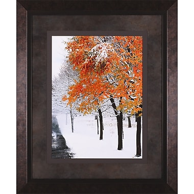 Art Effects Snow Fall III by Burney Lieberman Framed Photographic Print
