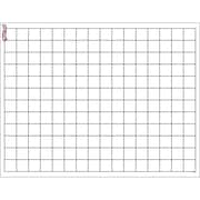 "Trend Enterprises® 17"" x 22"" Graphing Grid Small Squares Wipe-Off Chart"
