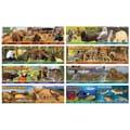 Carson Dellosa® Bulletin Board Set, Wildlife Habitats