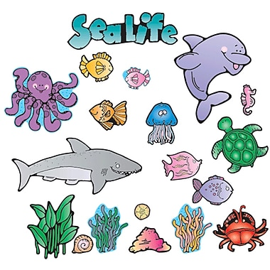 Carson Dellosa® Bulletin Board Set, Sea Life