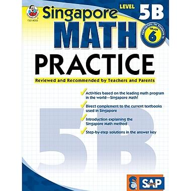 Carson Dellosa® Frank Schaffer Singapore Math Practice Level 5B Workbook, Grades 6