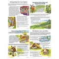 McDonald Publishing Comprehension Skills Poster Set