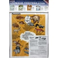 McDonald Publishing Animals Vertebrates Poster Set