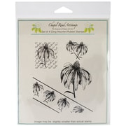 Class Act Chapel Road 5 3/4 x 6 3/4 Cling Mounted Rubber Stamp Set, Angle Rudbeckia