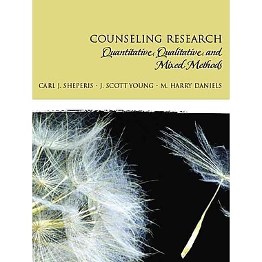 mixed methods research literature review