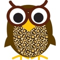 Ashley Magnetic Whiteboard Eraser, Wise Owl