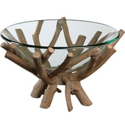 "Uttermost Thoro 12"" Clear Glass Bowl With Natural Wood Base and Light Gray Glaze"