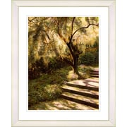 Studio Works Modern ''Tree w/ Steps'' by Mia Singer Framed Painting Print; Creamy White