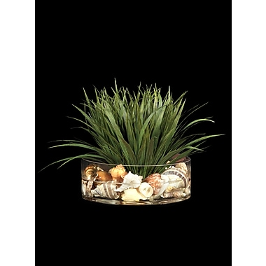 Tree Masters Inc. Grass w/ Shells Center Piece