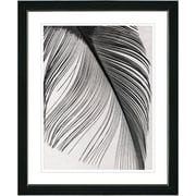 Studio Works Modern ''Feather'' by Zhee Singer Framed Painting Print; Satin Black