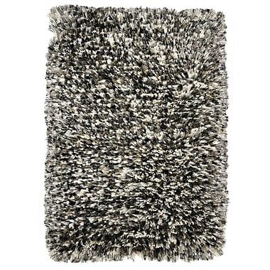 Kosas Home Elegante Luna Pearl Gray Shag Area Rug; 2' x 3'