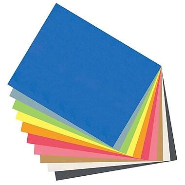 NAP – Papier de bricolage, 24 po x 36 po, blanc, paq./96