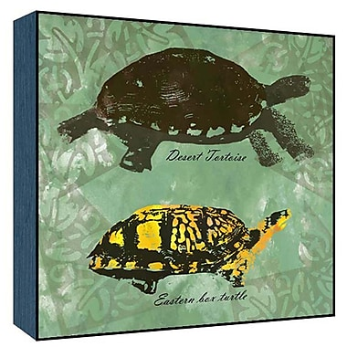Green Leaf Art Earth Turtles Graphic Art; 24'' H x 24'' W x 1.5'' D