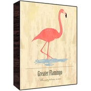 Green Leaf Art Greater Flamingo Graphic Art; 28'' H x 22'' W x 1.5'' D