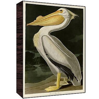 Green Leaf Art Pelican III Painting Print; 30'' H x 20'' W x 1.5'' D