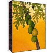 Green Leaf Art Green Fruit Wall Art; 36'' H x 24'' W x 1.5'' D