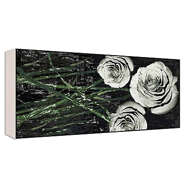 Green Leaf Art Romantic Roses II Graphic Art; 20'' H x 40'' W x 1.5'' D