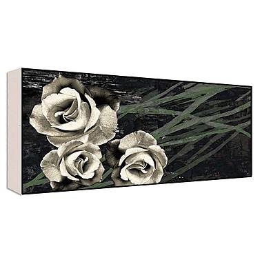 Green Leaf Art Romantic Roses I Photographic Print; 20'' H x 40'' W x 1.5'' D