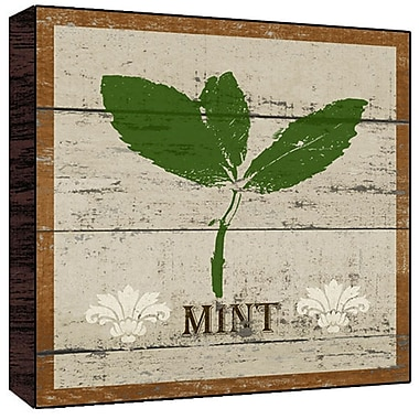 Green Leaf Art Mint Graphic Art Plaque; 12'' H x 12'' W x 1.5'' D