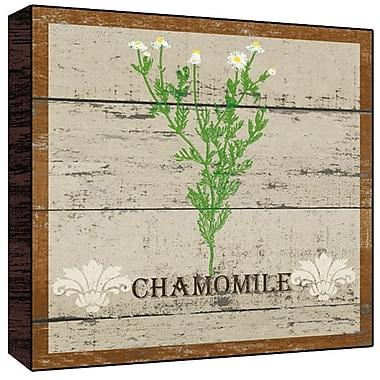 Green Leaf Art Chamomile Graphic Art Plaque; 12'' H x 12'' W x 1.5'' D