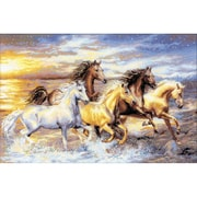 """Riolis® 23 5/8"""" x 15 3/4"""" Counted Cross Stitch Kit, In The Sunset"""