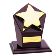 Chass Star Runner-Up Award