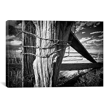 iCanvas 'Holding Strong' by Dan Ballard Photographic Print on Canvas; 18'' H x 26'' W x 0.75'' D