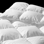 Highland Feather Dijon Down Comforter; Full