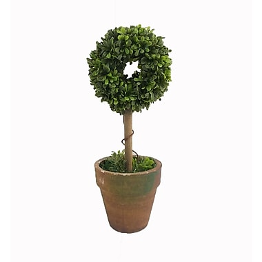 Craft Outlet Floral Ring Topiary in Pot (Set of 2)