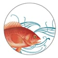 October Hill Fish Heavy Paper Coaster (12 Pack)