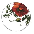 October Hill Papaver Heavy Paper Coasters (12 Pack)