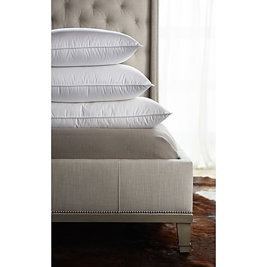 Down Inc. Classic Filled Medium Sleeping 230 Thread Count Down Pillow ; Queen