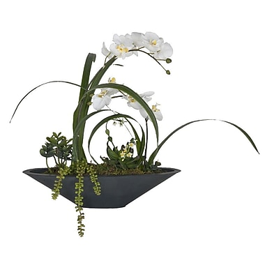 Creative Branch Faux White Orchids w/ Succulents in Planter