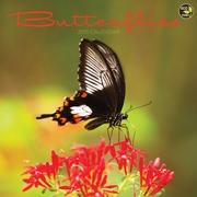 TF Publishing Butterflies 2015 Wall Calendar