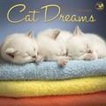TF Publishing in.Cat Dreamsin. 2015 Wall Calendar