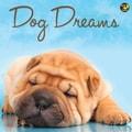 TF Publishing in.Dog Dreamsin. 2015 Wall Calendar