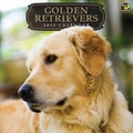 TF Publishing in.Golden Retrieversin. 2015 Wall Calendar