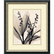 Amanti Art Lily of the Valley Framed Art by Judith McMillan