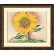 "Amanti Art ""A Sunflower from Maggie, 1937"" Framed Art by Georgia O'Keeffe"