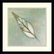 "Amanti Art ""Neptune's Garden II"" Framed Art by Bert Myers"