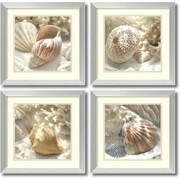 Amanti Art Coral Shell - Set of 2 Framed Art by Donna Geissler