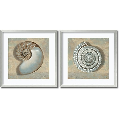 """""Amanti Art """"""""Aqua Shells - Set of 2"""""""" Framed Art by Caroline Kelly"""""" 1209031"