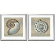 Amanti Art Aqua Shells - Set of 2 Framed Art by Caroline Kelly