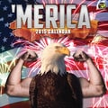 TF Publishing in.Mericain. 2015 Wall Calendar