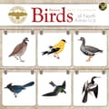 TF Publishing in.Peterson Field Guide to Birds of North Americain. 2015 Wall Calendar