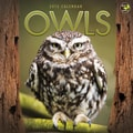 TF Publishing in.Owlsin. 2015 Wall Calendar